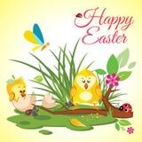 Pré heureux de fond de Pâques avec les poulets mignons dans l'oeuf, la coccinelle et le papillon dans l'herbe Images stock