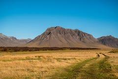 Pré jaune et montagne volcanique Image libre de droits