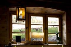 Pré par une fenêtre Image libre de droits