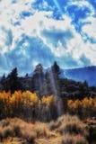 Pré près de lac gull dans les sierras orientales de la Californie photographie stock libre de droits