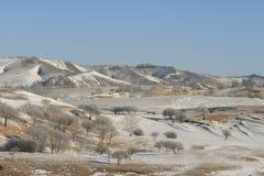 Pré sous la neige en hiver Images libres de droits