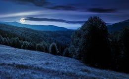Pré sur la colline boisée en montagne la nuit Images stock