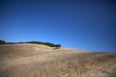 Pré sur une colline photo libre de droits