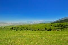 Pré vert avec des montagnes à l'arrière-plan Photographie stock