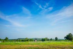 Pré vert avec le fond de ciel bleu photo libre de droits