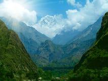 Pré vert en montagne Images stock