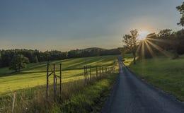Pré vert en montagnes de Krkonose Photographie stock libre de droits