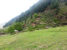 Pré vert luxuriant avec les maisons en bois traditionnelles Photo libre de droits