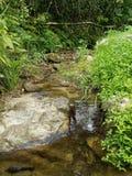Précipitation de rivière photo libre de droits