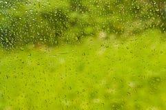 Précipitations sur la fenêtre de train avec le fond vert images stock