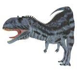Prédateur de Majungasaurus Photos libres de droits
