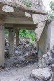 Prédio da escola coberto de vegetação abandonado velho Imagem de Stock