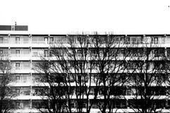 Prédio de apartamentos com as árvores em preto e branco Fotografia de Stock Royalty Free