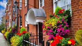 Prédio de apartamentos com flores de florescência Foto de Stock
