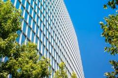 Prédio de escritórios contemporâneo com folhas verdes Fotografia de Stock