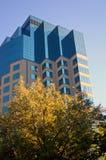 Prédio de escritórios corporativo Foto de Stock Royalty Free