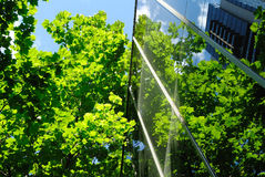 Prédio de escritórios de vidro com reflexões verdes foto de stock