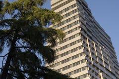 Prédio de escritórios moderno ao lado do parque Fotos de Stock Royalty Free