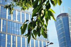 Prédio de escritórios moderno com folhas verdes Imagens de Stock Royalty Free