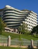 Prédio de escritórios moderno curvado Imagem de Stock