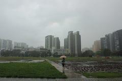 Prédios de apartamentos de Singapura um o dia chuvoso imagem de stock royalty free