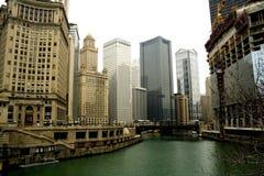 Prédios de escritórios de Chicago fotografia de stock royalty free