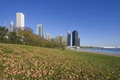Prédios de escritórios em Chicago Fotos de Stock Royalty Free