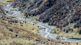 Préfecture d'aba dans la province de Sichuan, montagne de quatre filles Photographie stock
