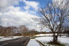 Préfecture d'Aomori, région de Tohoku, Japon avec le fond gentil Photos libres de droits