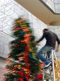 Préoccupez tout en décorant l'arbre de Noël Images libres de droits