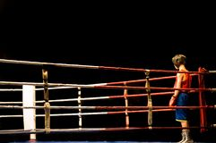 Préparation au combat de boxe Image libre de droits