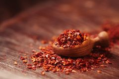 Préparation d'épice de Harissa - les chilles d'un rouge ardent morrocan se sont mélangés Images stock