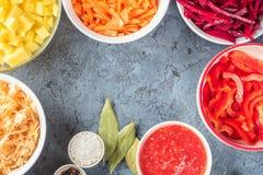 Préparation d'ingrédients de légumes de soupe à borsch dans la cuisine images libres de droits