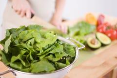 Préparation d'une salade Photographie stock libre de droits