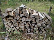Préparation de bois de chauffage Fond Bois de chauffage dans le bois de chauffage de forêt sur la cheminée de secteur de camping  Photographie stock libre de droits