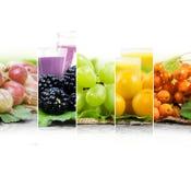 Préparation de boissons de fruit Photographie stock