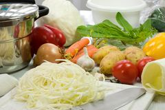 Préparation de borscht. image stock