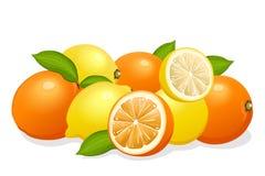 Préparation de citrons et d'oranges Photographie stock