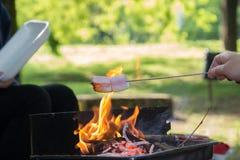 Préparation de guimauve sur le feu en parc Photos libres de droits