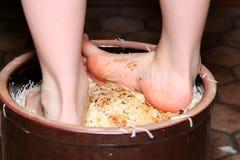 Préparation de la choucroute Image libre de droits