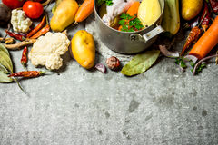 Préparation de potage au poulet parfumé avec les légumes frais Photo stock
