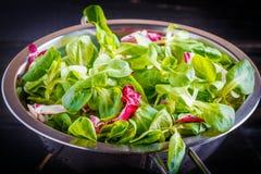 Préparation de salade Photo libre de droits
