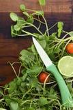 Préparation de salade avec Watercess sur le Tableau en bois Image libre de droits