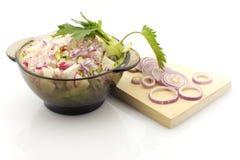 Préparation de salade, d'isolement Images stock