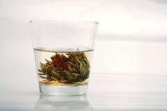 Préparation de thé de souci Photos libres de droits