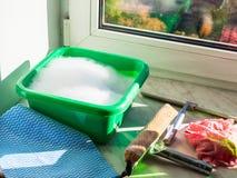 préparation de verre de fenêtre de lavage photo libre de droits
