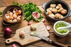 Préparation des escargots avec du beurre et des herbes d'ail Photographie stock
