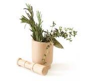 Préparation des herbes photographie stock libre de droits