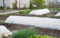Préparation du jardin avant gel Images stock