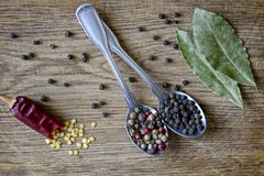 Préparation et grains de poivre d'épice en cuillères en métal, une cosse cassée de poivron rouge chaud avec des graines et feuill photographie stock